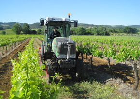 Viticultural equipment